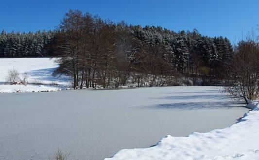Weiher Winter