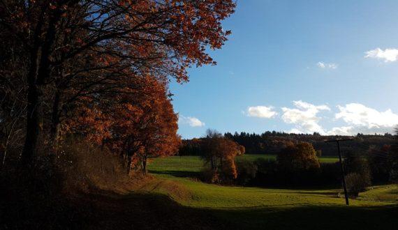 Wiesental Ehrenbach im Herbst